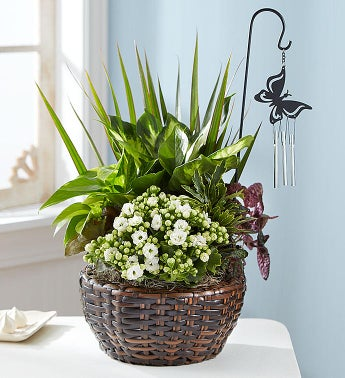 Butterfly Chime Dish Garden