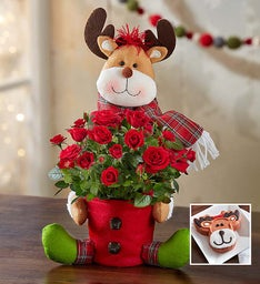 Rudy the Red Rose Reindeer