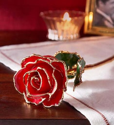 24K Gold Red Rose