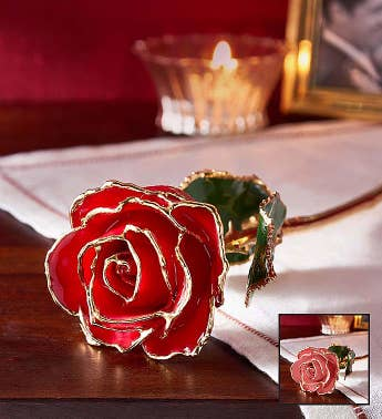 24K Gold Dipped Rose- Red or Pink