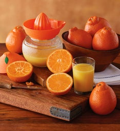HoneyBells with Juicer