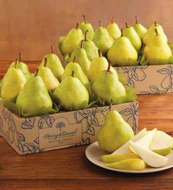 Fall Bartlett Pears Duo