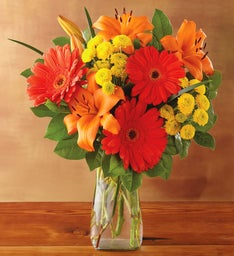 Orange Daisy Bouquet