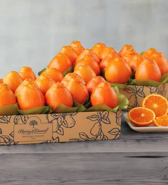 Cushman39s174 Florida HoneyBells - Two Trays