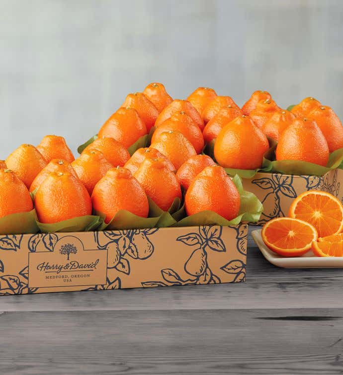 Cushman's® Florida HoneyBells - Two Trays