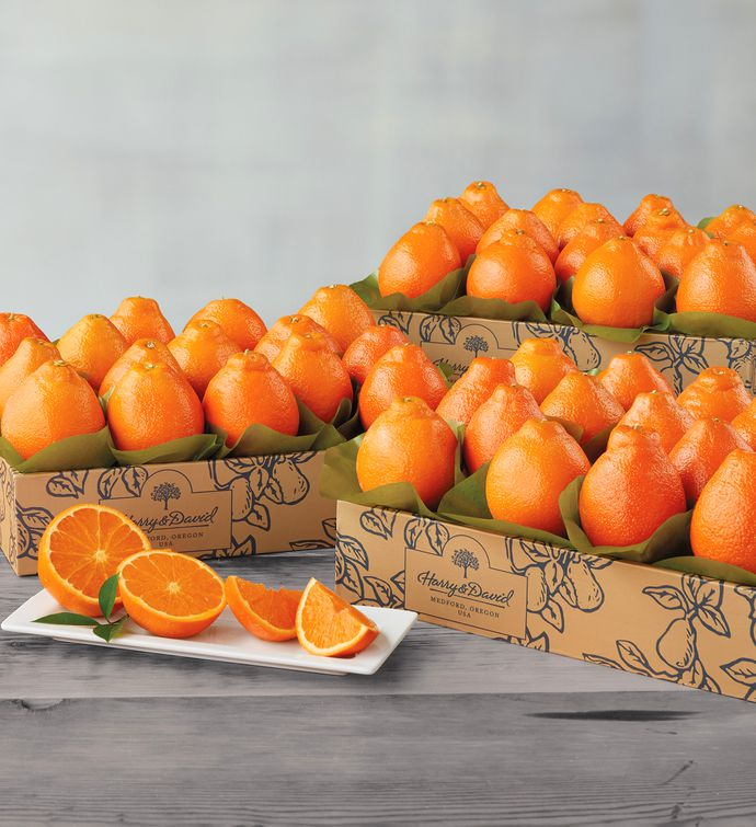 Cushman's® Florida HoneyBells - Three Trays