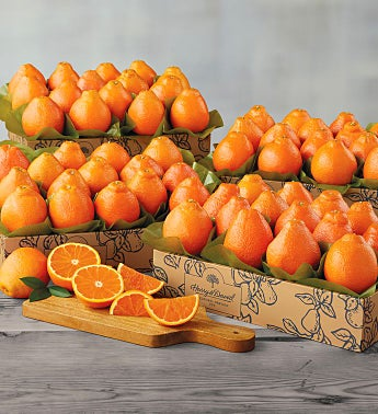 Cushman's® Florida HoneyBells - Four Trays