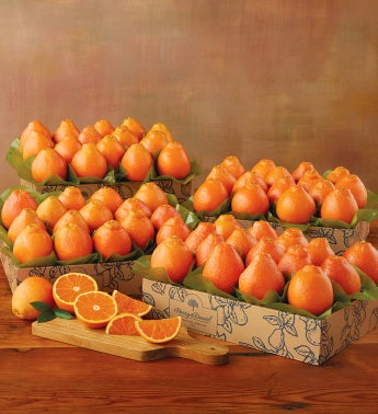 Cushman's® HoneyBells - Four Trays