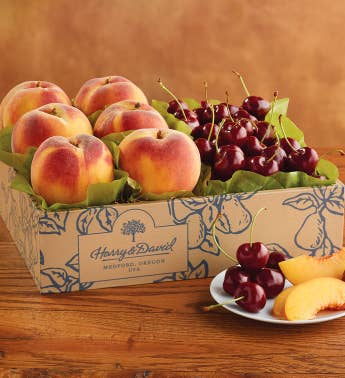 Oregold174 Peaches and Cherry-Oh174 Cherries