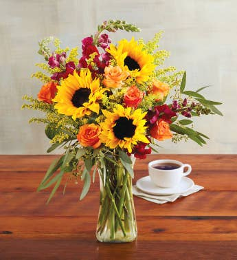 Bouquets Gerbera Daisy Orchids Lilies More Harry David