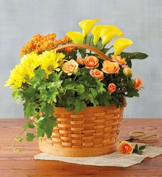 Harvest Floral Basket