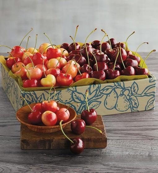 Rainier and Plump-Sweet Cherries