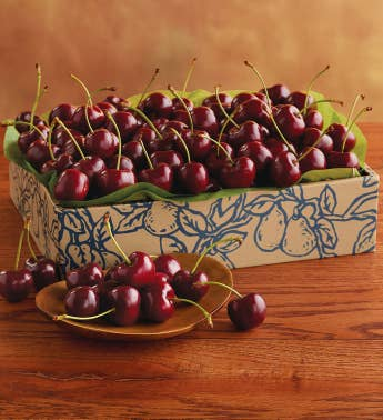 Southern Hemisphere Cherry-Oh174 Cherries