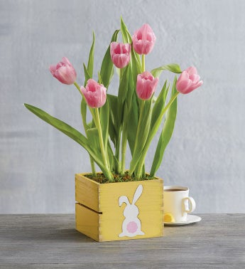 Pink Tulips in Bunny Crate