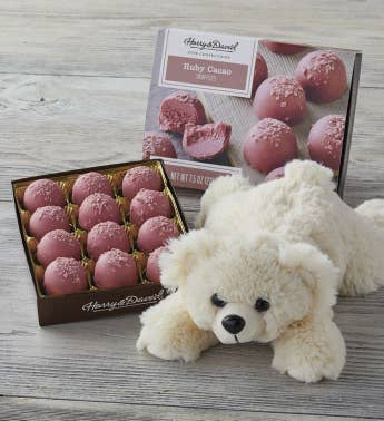 Plush Bear with Ruby Cacao Truffles