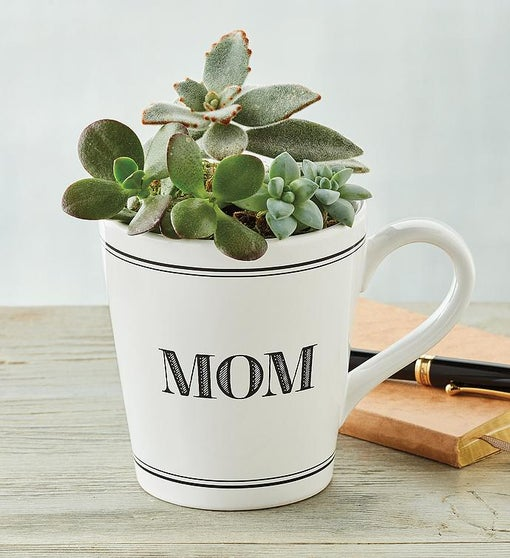 Mother's Day Mug with Succulents