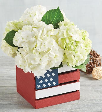 White Hydrangea in American Flag Crate