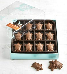 V Chocolate Peanut Butter Filled Turtles 24 pc